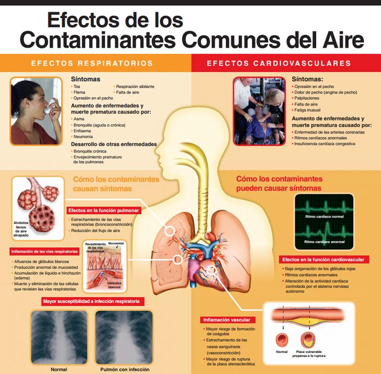 enfermedades producidas por la contaminacion del aire