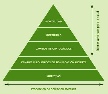 Representación de los diferentes efectos de la contaminación atmosférica sobre la salud.