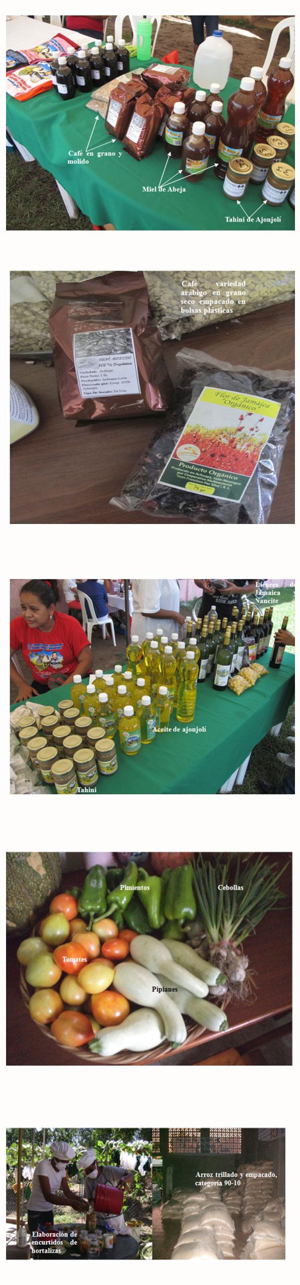 El procesamiento de nuevos productos agrícolas aporta valor agregado a las familias de Achuapa (Nicaragua)